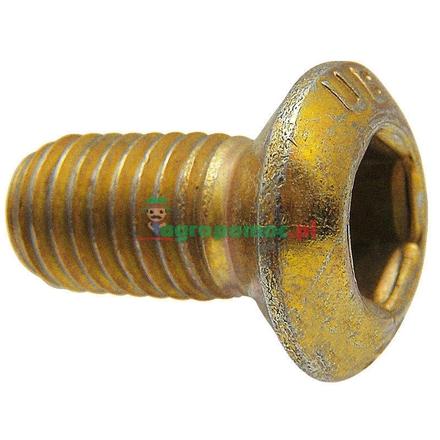 Attachment screw | 607001801