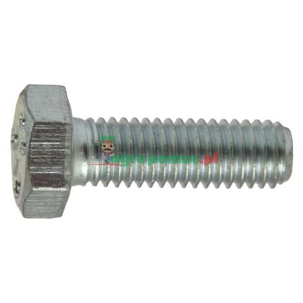 Hexagon-head bolt