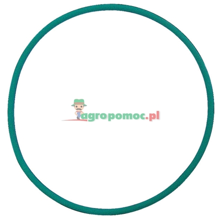 Amazone O-ring   0192610