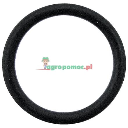 Amazone O-ring | FC007, 0227600