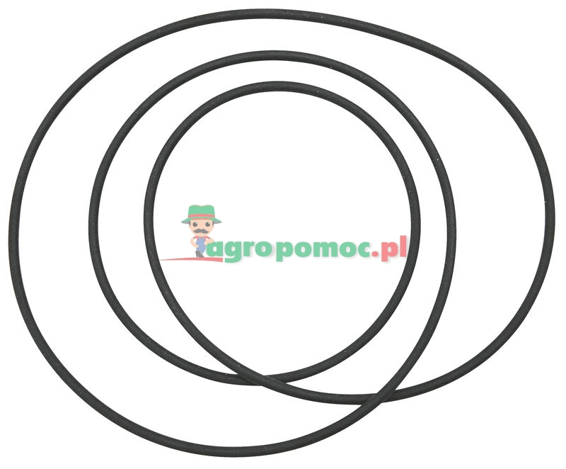 O-ring | 16602632 | zdjęcie nr 1
